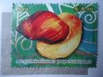 Stamps Peru -  Caracol - Megalobulimus Popelairianus.