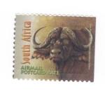 Sellos del Mundo : Africa : Sudáfrica :  Bufalo