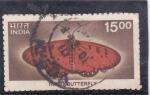 Stamps : Asia : India :  mariposa-
