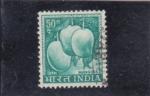 Stamps : Asia : India :  mango