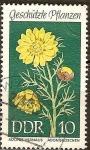 Sellos del Mundo : Europa : Alemania :  Plantas protegidas Adonis (DDR).