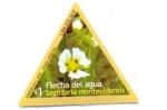 Stamps Uruguay -  FLORES