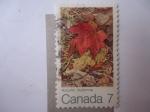Stamps Canada -  Autumn Automne - (Hoja de Arce9