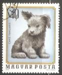 Sellos de Europa - Hungría -  Canis Familiaris