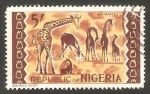 Stamps Nigeria -  188 - Jirafas