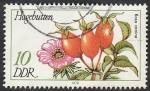 Sellos del Mundo : Europa : Alemania :  1957 - Planta hagebutten