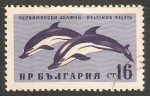 Stamps Bulgaria -  Delfinus belfis