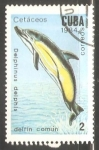 Sellos de America - Cuba -  Delphinus delphis