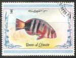 Sellos del Mundo : Asia : Emiratos_Árabes_Unidos : pez