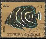 Sellos del Mundo : Asia : Emiratos_Árabes_Unidos : Pomacanthus semicireculatus