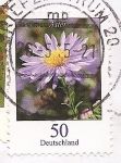 Stamps Germany -  Aster