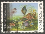 Stamps Poland -  Underwater fauna and flora