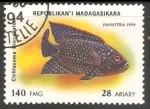 Sellos de Africa - Madagascar -  Cichlasoma biocellatum