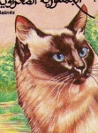 Stamps Oceania - Samoa -  Gato