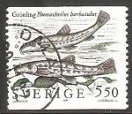 Sellos de Europa - Suecia -  Nemacheilus barbatulus