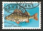 Sellos de Europa - Suiza -  SFV-FSPP 1883-1983
