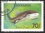 Sellos de Africa - Tanzania -  Sguatina afrikana