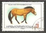 Sellos del Mundo : Europa : Bulgaria : Equus ferus przewalskii