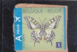 Sellos de Europa - Bélgica -  mariposa-