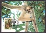 Stamps Brazil -  WWF