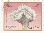 Stamps : Asia : United_Arab_Emirates :  flores-FUJEIRA