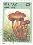 Stamps Vietnam -  setas-collybia fusipes