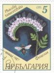 Sellos de Europa - Bulgaria -  flores-