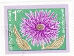 Stamps : Europe : Bulgaria :  flores-