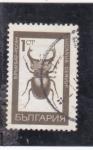 Sellos de Europa - Bulgaria -  insecto- lucanus cervus