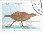 Stamps Cuba -  ave- galliralfus australis