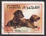 Stamps : Asia : United_Arab_Emirates :  Perro de raza