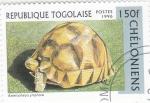 Stamps Togo -  tortuga