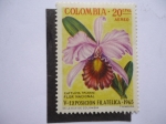 Stamps Colombia -  Flora: Flor Nacional (Cattleya Triaanae) V-Exposición Filatñelica 1965