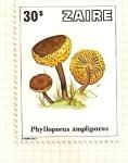 Stamps Africa - Democratic Republic of the Congo -  Setas. Phylloporus ampliporus.