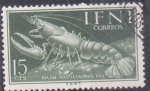 Stamps : Africa : Morocco :  dia del sello colonial- crustaceo