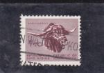 Sellos de Africa - Sudáfrica -  bufalo africano