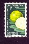 Stamps Cameroon -  frutas de la tierra
