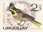 Stamps Uruguay -  ave-cardenal amarillo