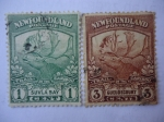 Sellos de America - New Foundland -  Fauna: Caribou