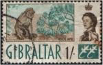 Sellos del Mundo : Europa : Gibraltar : Monos de Gibraltar