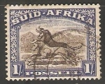 Stamps South Africa -  Equidos