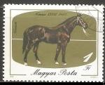 Stamps : Europe : Hungary :  Negro Nonius