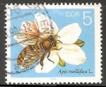 Stamps Germany -  Abeja europea