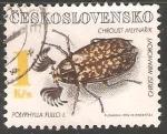 Sellos de Europa - Checoslovaquia -  Polyphylla fullo- escarabajo batanero