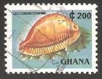Stamps Ghana -  Leucodon cowrie
