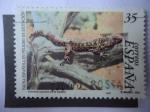 Stamps Spain -  Ed: 3614 - Lagarto Gigantede El Hierro - Fauna Española en peligrto de extinción.
