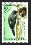 Sellos del Mundo : Asia : Corea_del_norte : Precervación  Pájaro carpintero