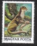 Stamps Hungary -  Animals (1979)