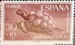 Sellos de Europa - España -  Intercambio fd2a 0,30 usd 30 + 10 cents. 1961