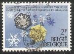 Stamps Belgium -  Institut Royal - ciencia